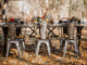 Fall Rustic Table Rent a Tent